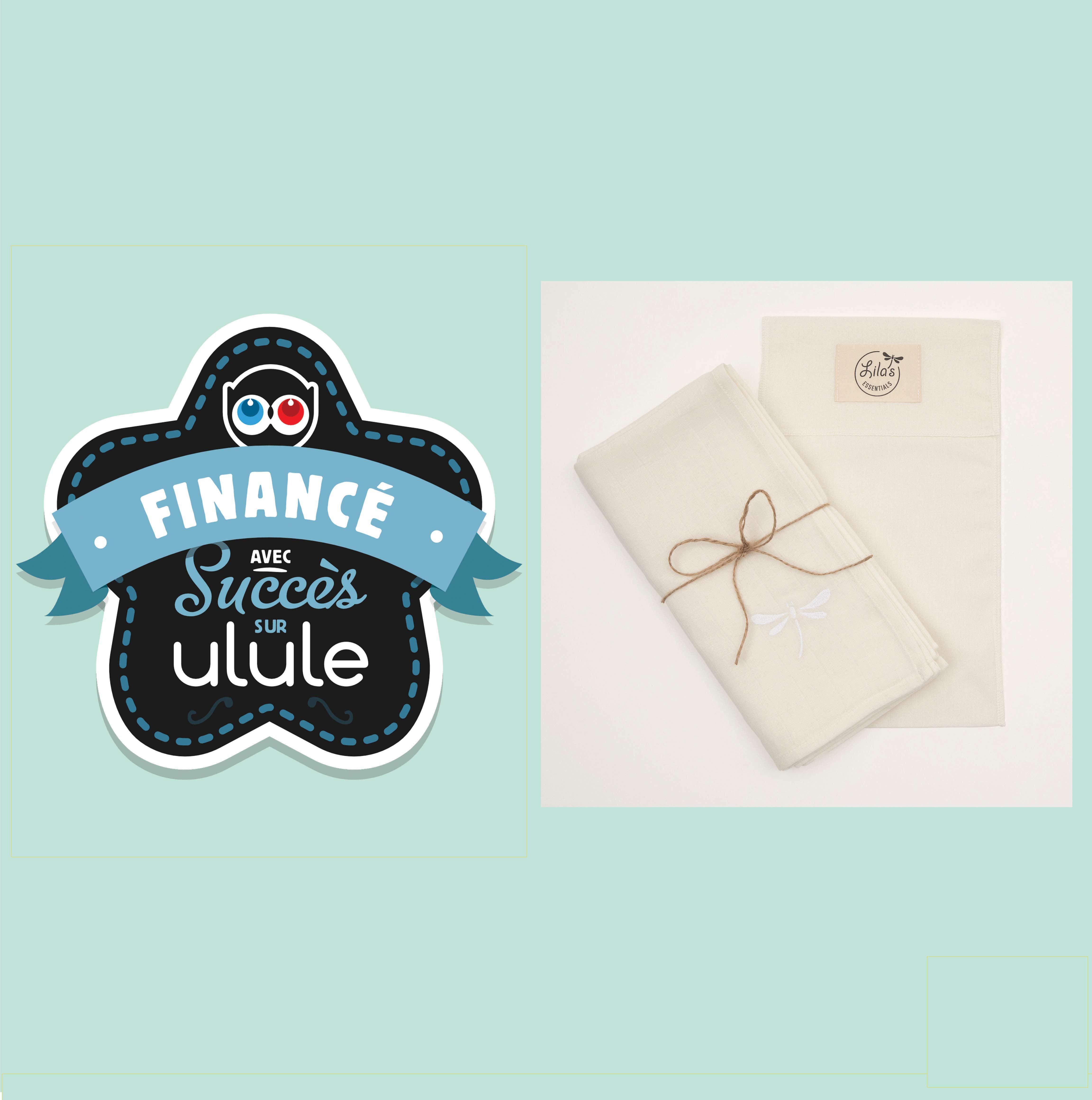 ulule campaign successfully financed